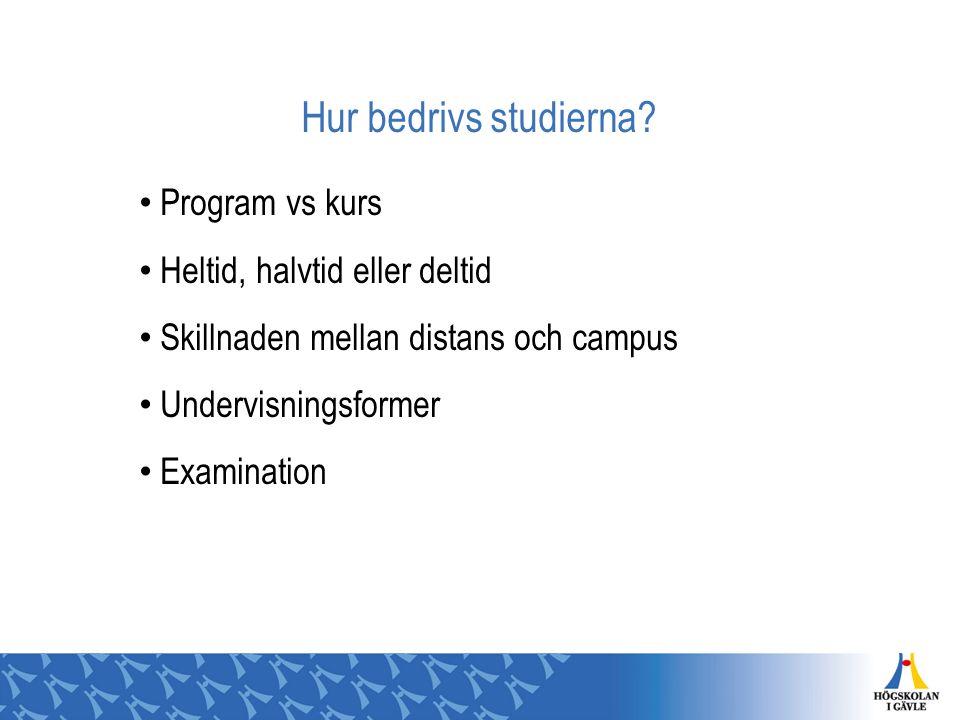 Hur bedrivs studierna Program vs kurs Heltid, halvtid eller deltid