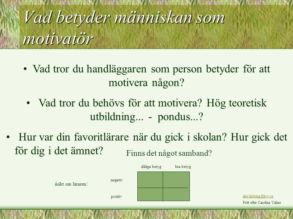 Vad betyder människan som motivatör
