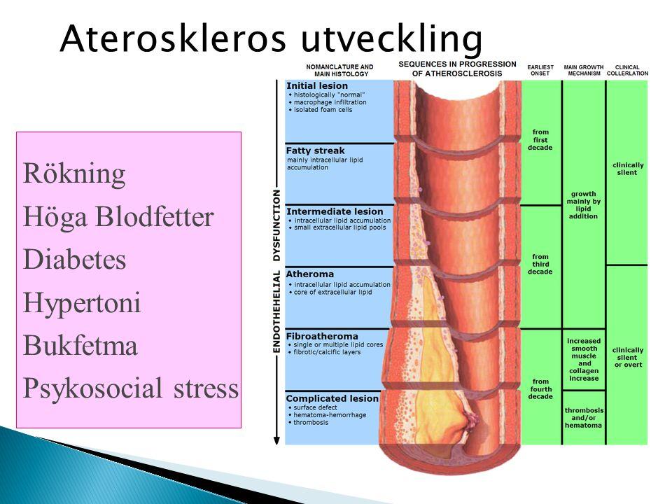 Ateroskleros utveckling