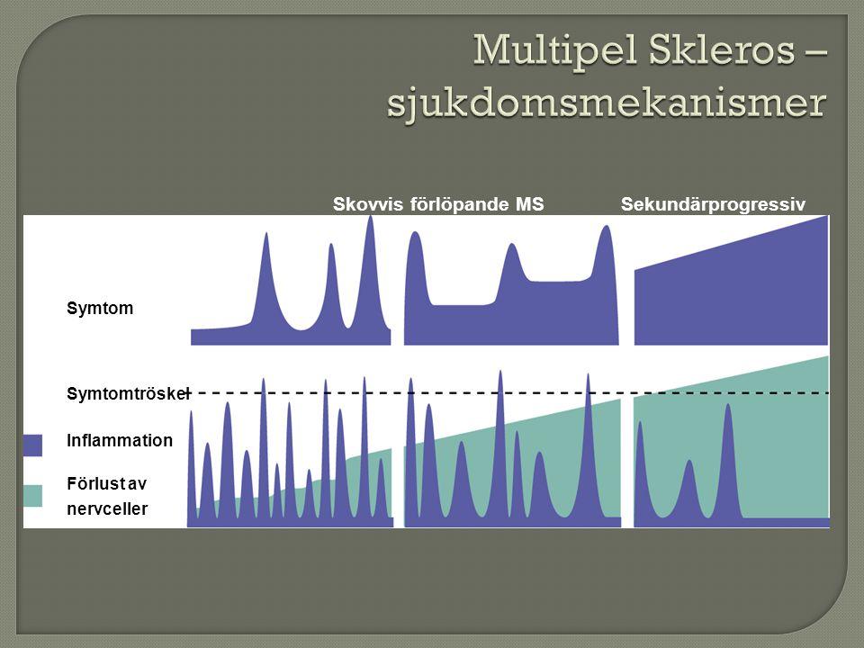 Multipel Skleros –sjukdomsmekanismer