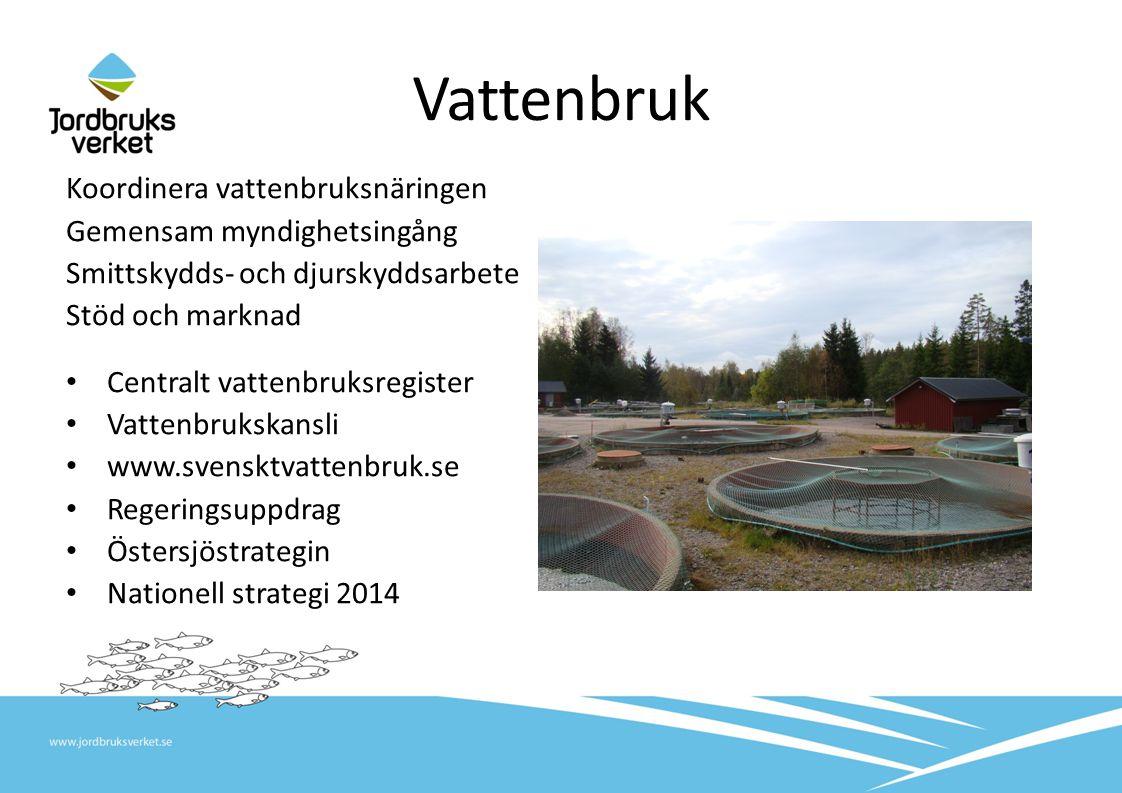 Vattenbruk Koordinera vattenbruksnäringen Gemensam myndighetsingång
