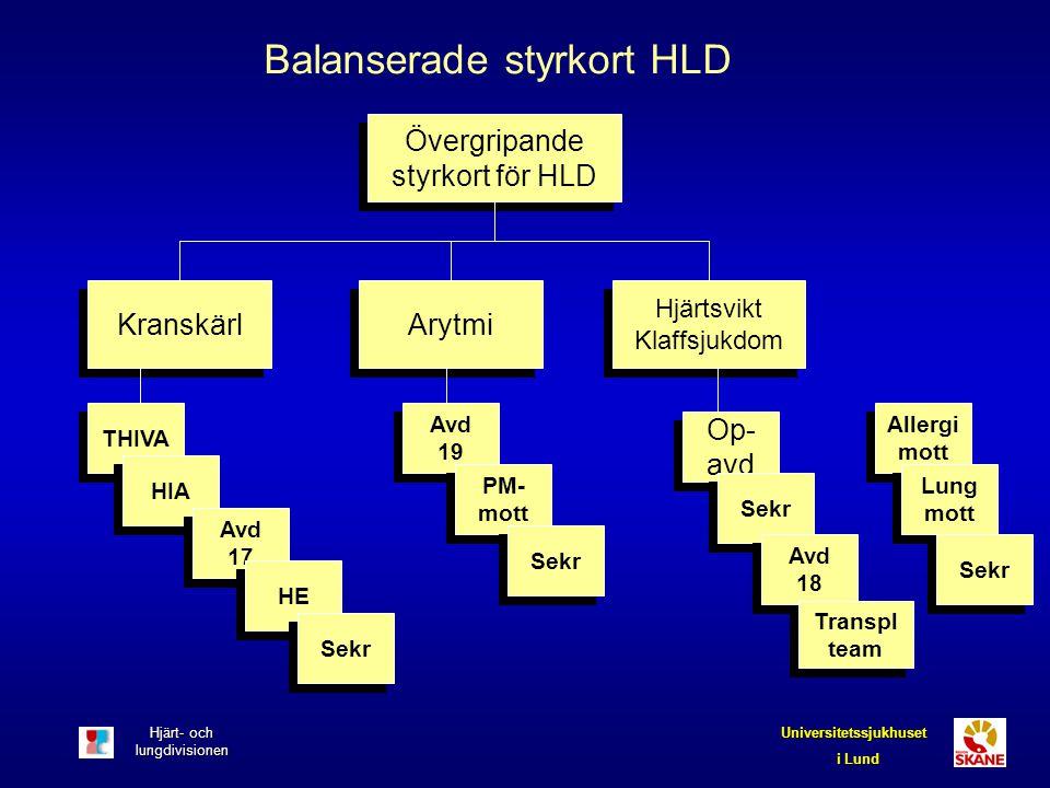 Balanserade styrkort HLD