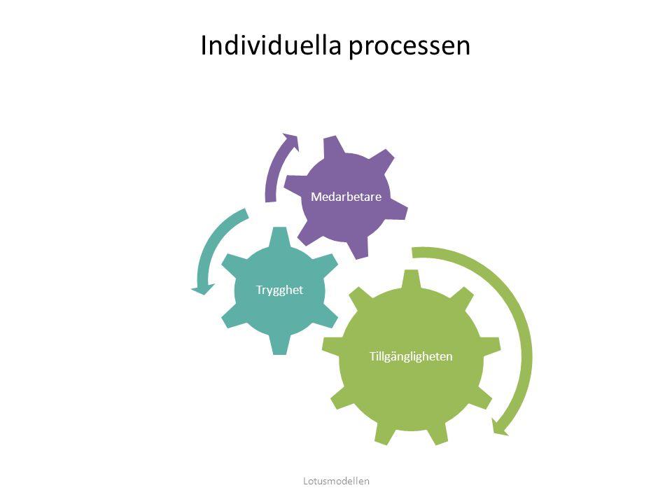 Individuella processen