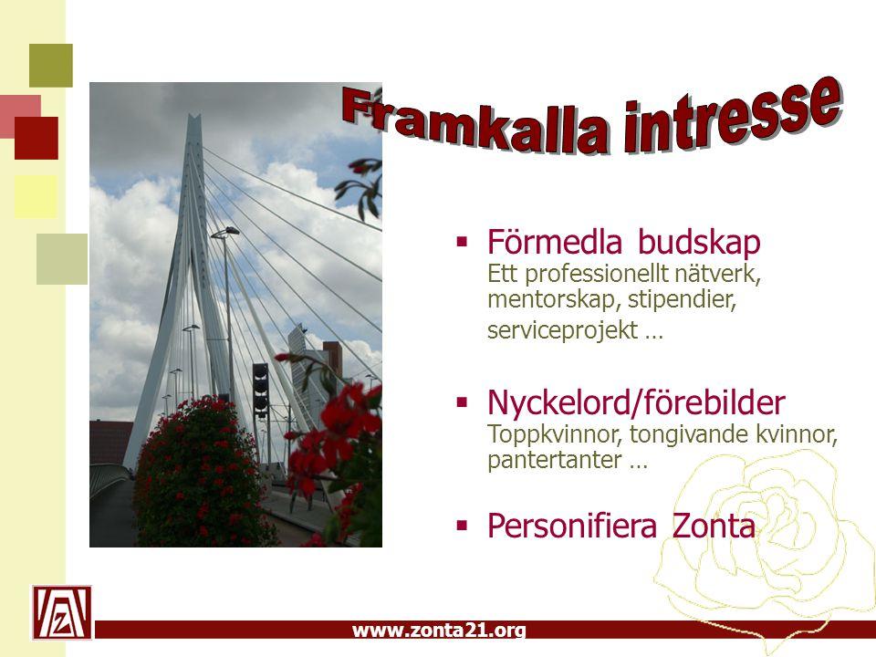 Framkalla intresse Förmedla budskap Ett professionellt nätverk, mentorskap, stipendier, serviceprojekt …