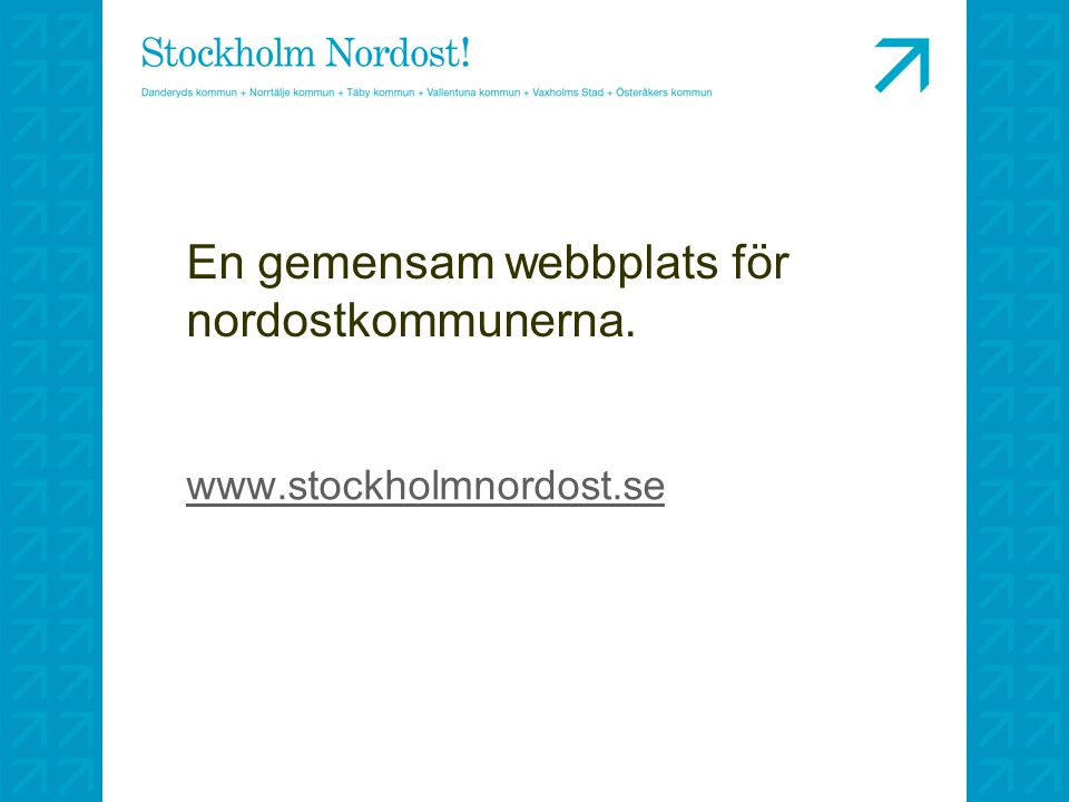 En gemensam webbplats för nordostkommunerna.