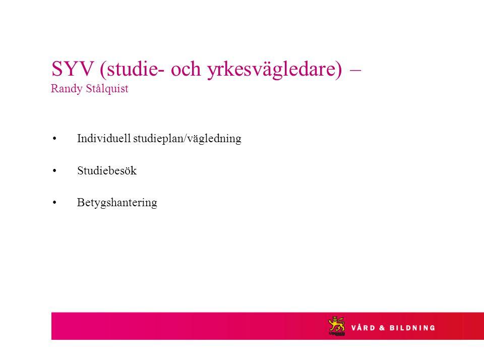 SYV (studie- och yrkesvägledare) – Randy Stålquist