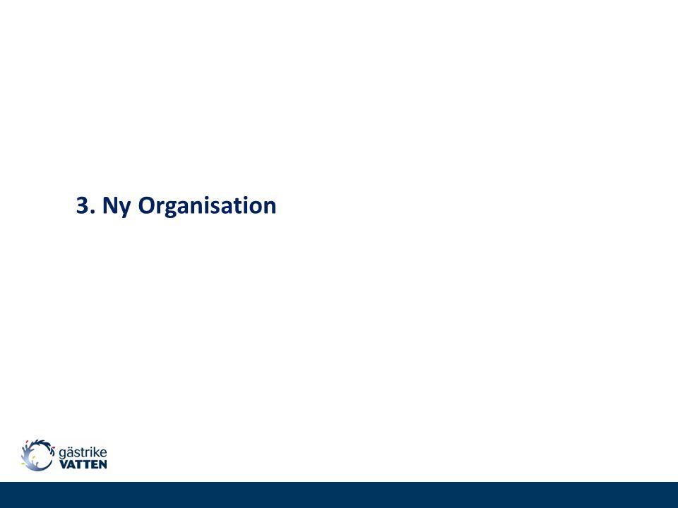 3. Ny Organisation
