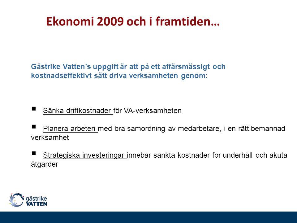 Ekonomi 2009 och i framtiden…