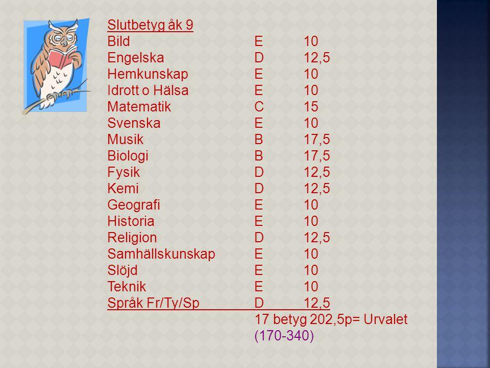 Slutbetyg åk 9 Bild E 10. Engelska D 12,5. Hemkunskap E 10. Idrott o Hälsa E 10. Matematik C 15.
