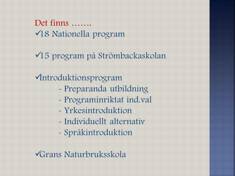 Det finns ……. 18 Nationella program. 15 program på Strömbackaskolan. Introduktionsprogram. - Preparanda utbildning.