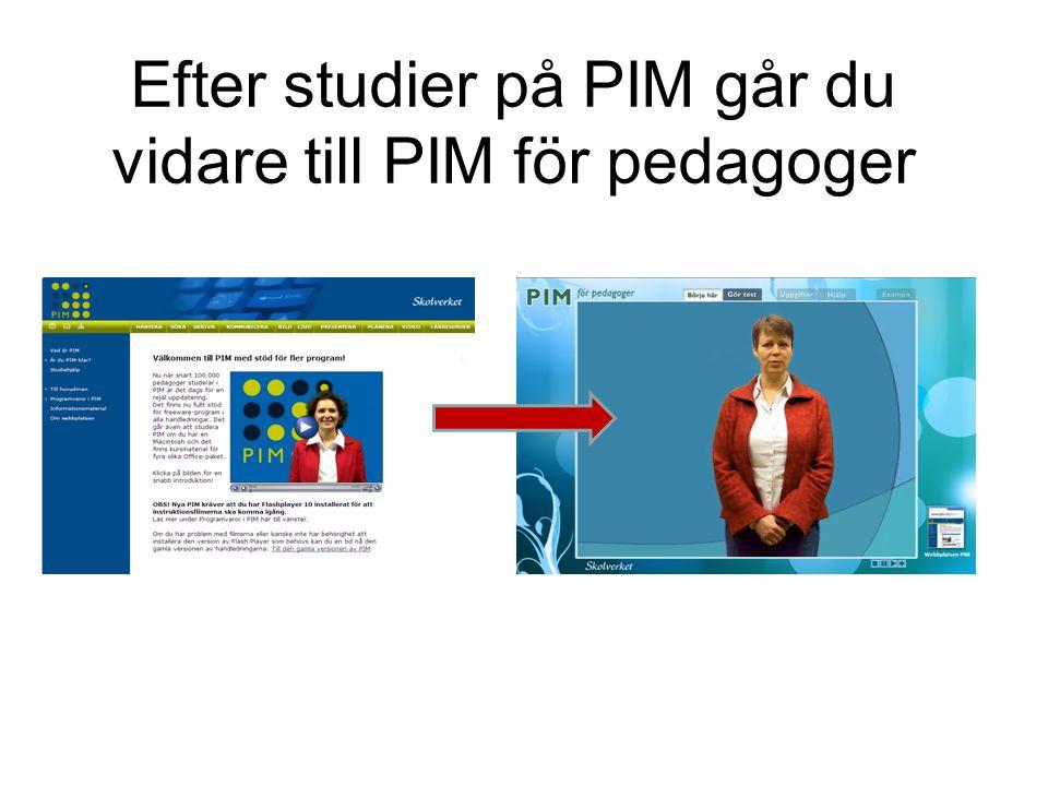 Efter studier på PIM går du vidare till PIM för pedagoger