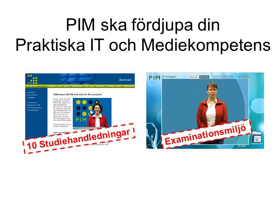 PIM ska fördjupa din Praktiska IT och Mediekompetens