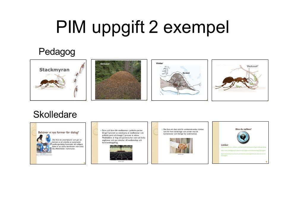 PIM uppgift 2 exempel Pedagog Skolledare