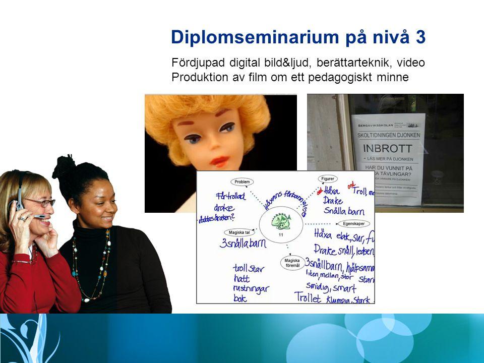 Diplomseminarium på nivå 3
