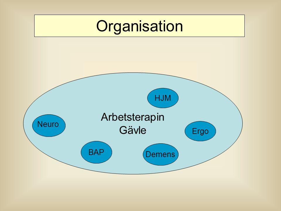 Organisation Arbetsterapin Gävle HJM Neuro Ergo BAP Demens