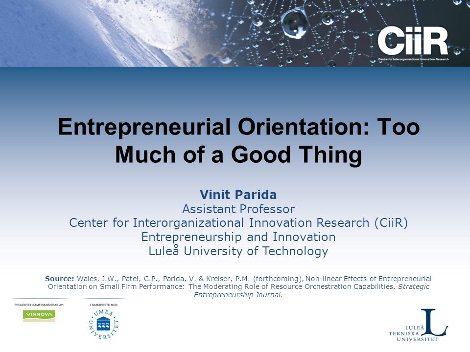 Entrepreneurial Orientation: Too Much of a Good Thing