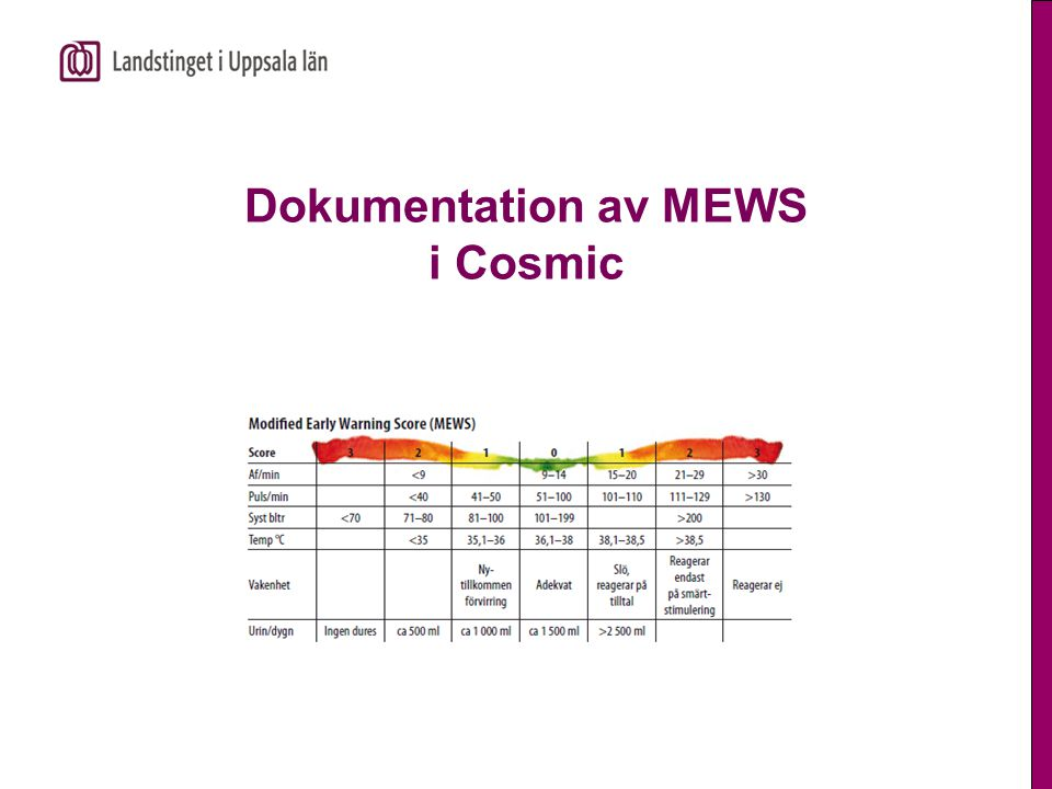 Dokumentation av MEWS i Cosmic