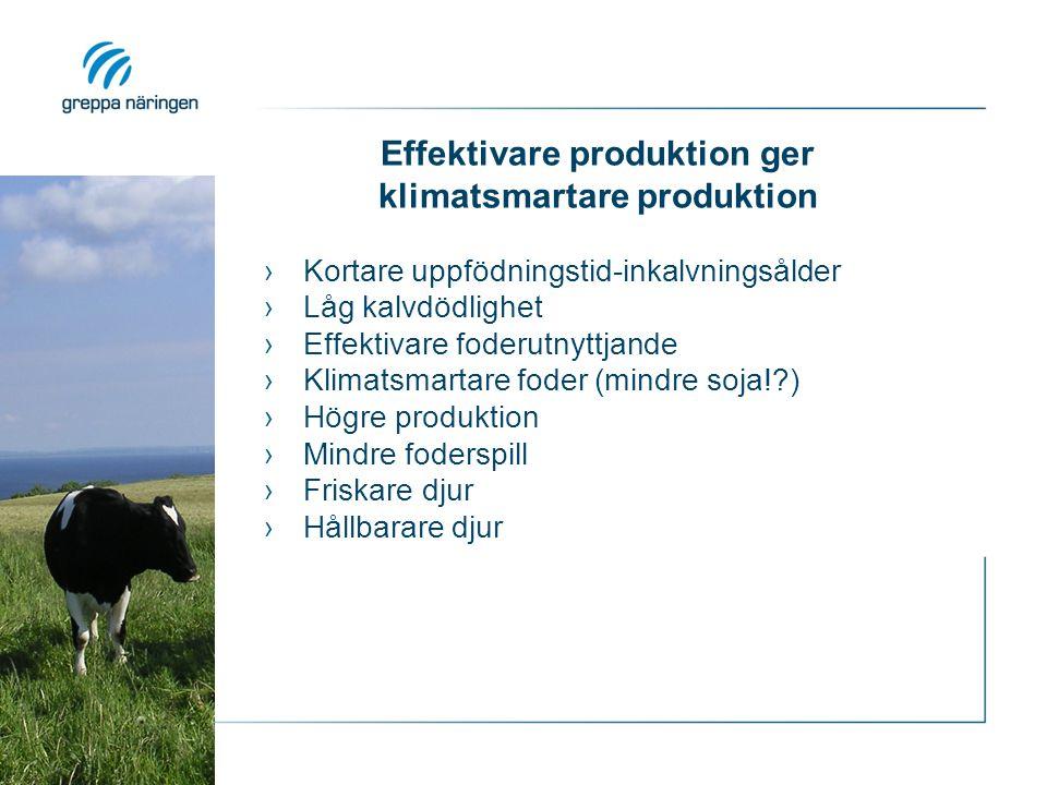 Effektivare produktion ger klimatsmartare produktion