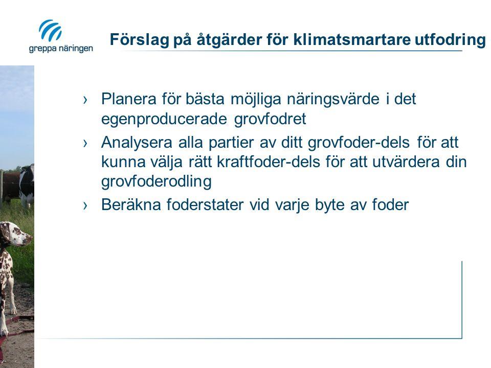 Förslag på åtgärder för klimatsmartare utfodring