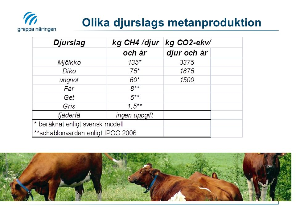 Olika djurslags metanproduktion
