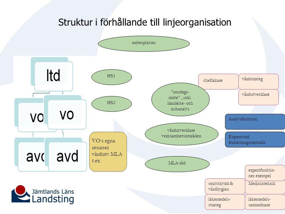 Struktur i förhållande till linjeorganisation