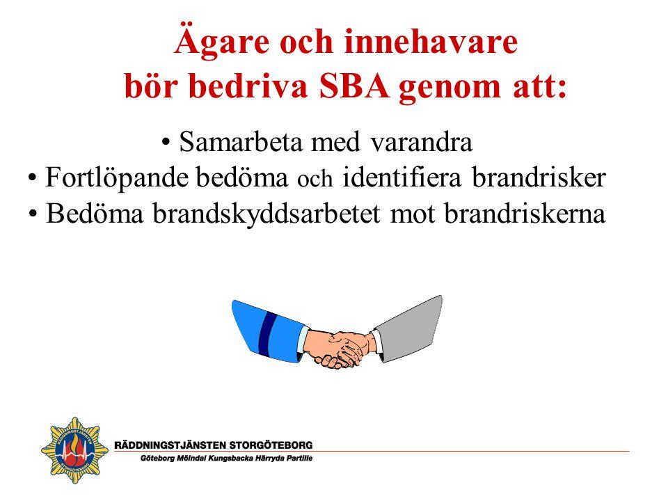 bör bedriva SBA genom att: