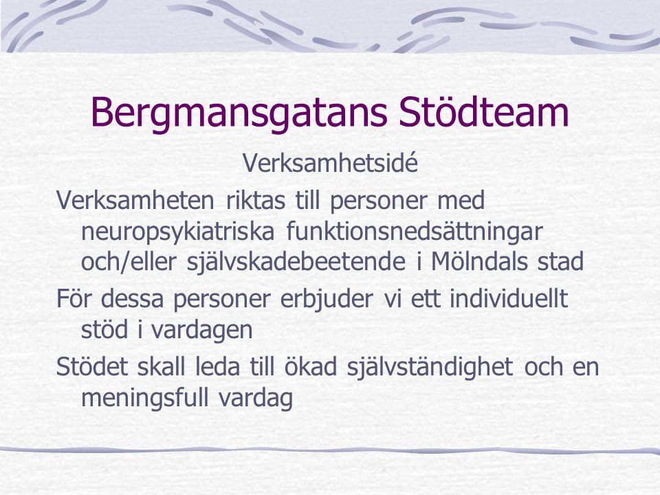 Bergmansgatans Stödteam