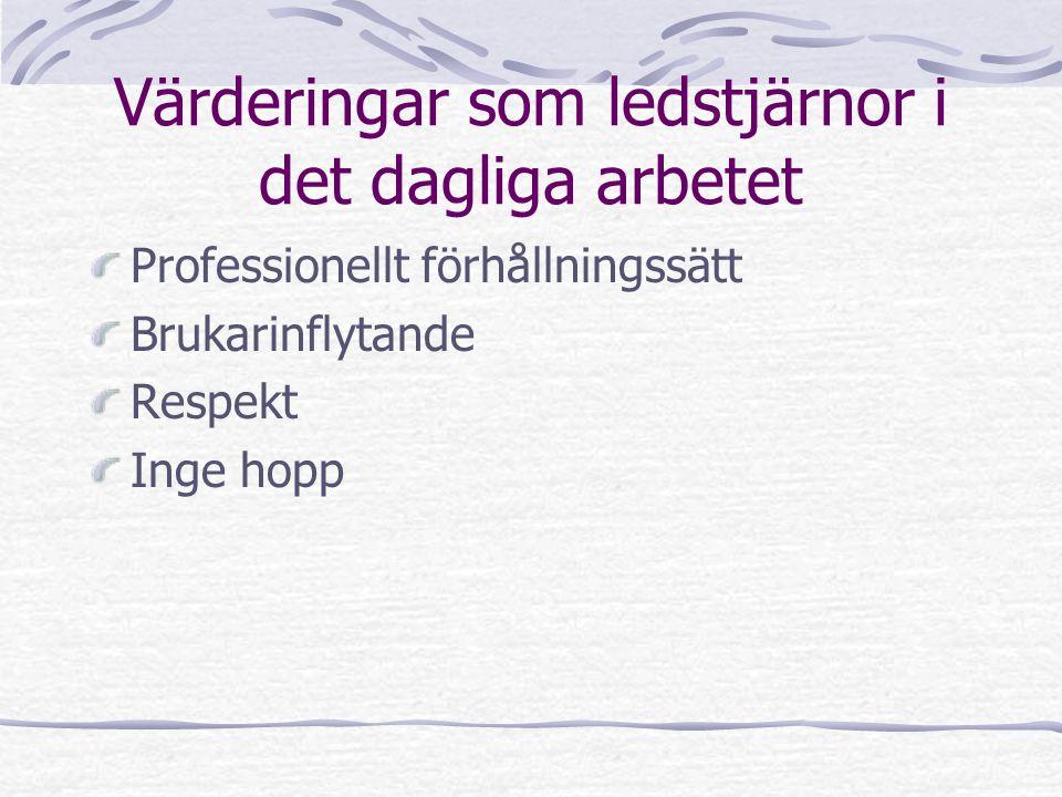 Värderingar som ledstjärnor i det dagliga arbetet