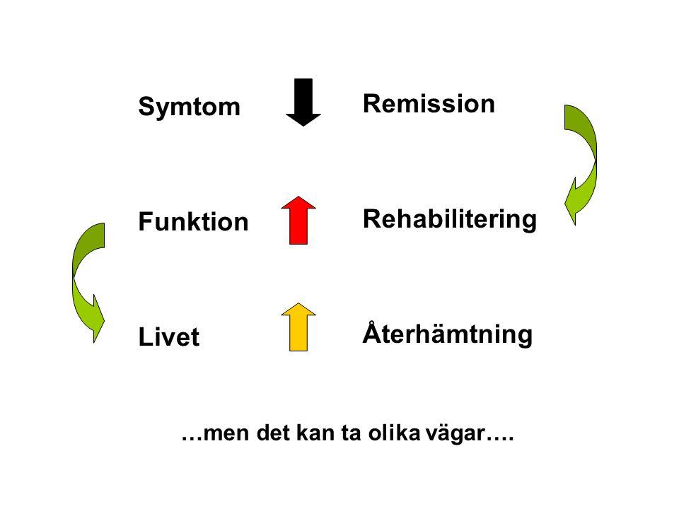 Remission Symtom Rehabilitering Funktion Återhämtning Livet