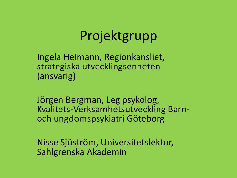 Projektgrupp Ingela Heimann, Regionkansliet, strategiska utvecklingsenheten (ansvarig)