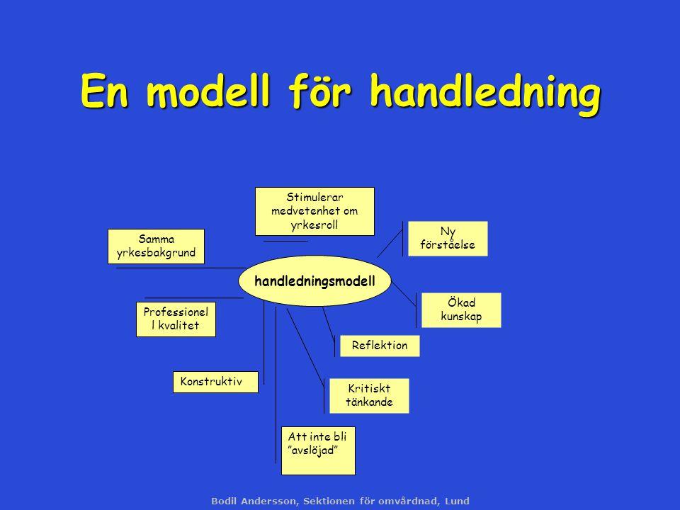 En modell för handledning