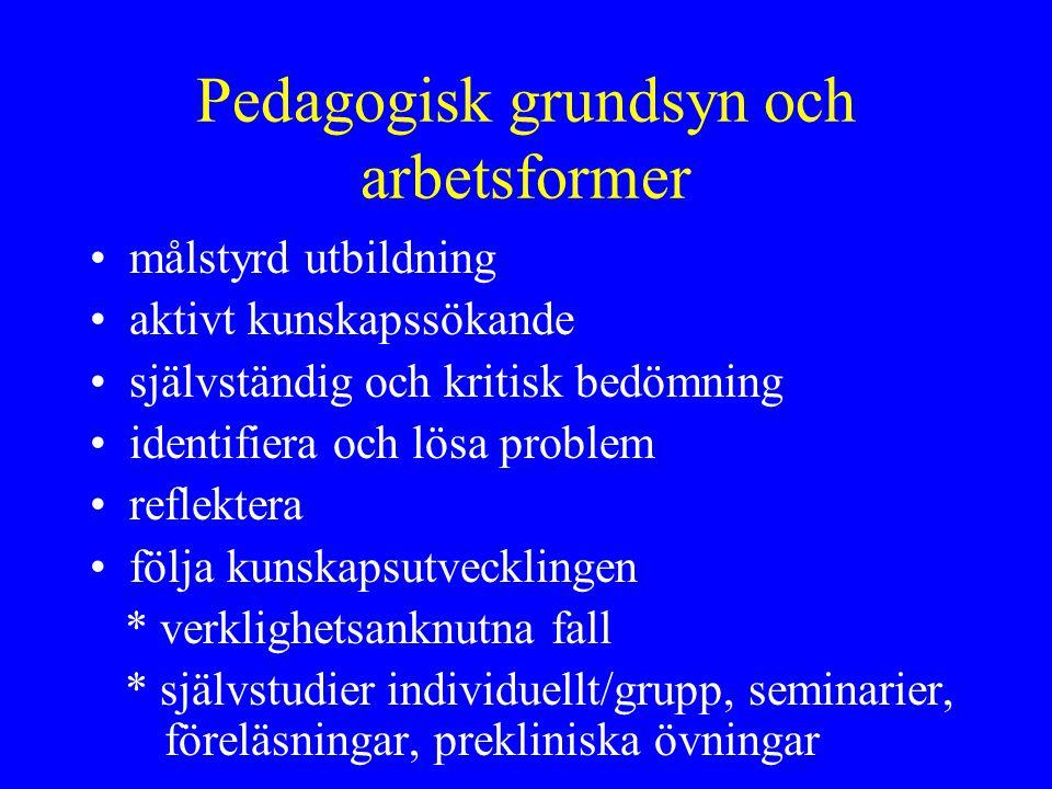 Pedagogisk grundsyn och arbetsformer