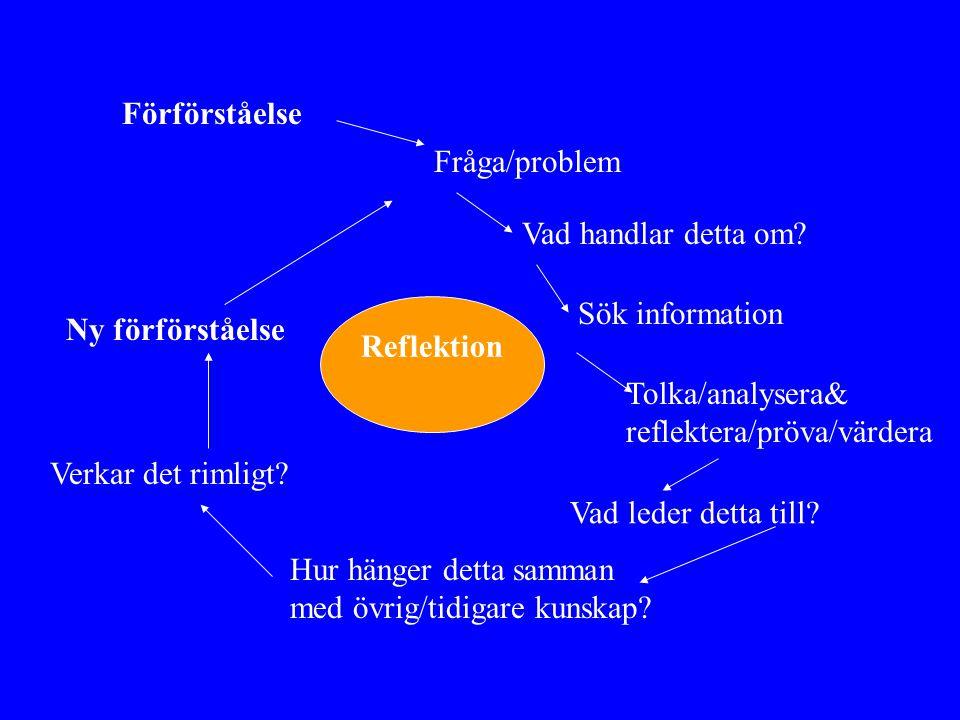 Förförståelse Fråga/problem. Vad handlar detta om Sök information. Reflektion. Ny förförståelse.