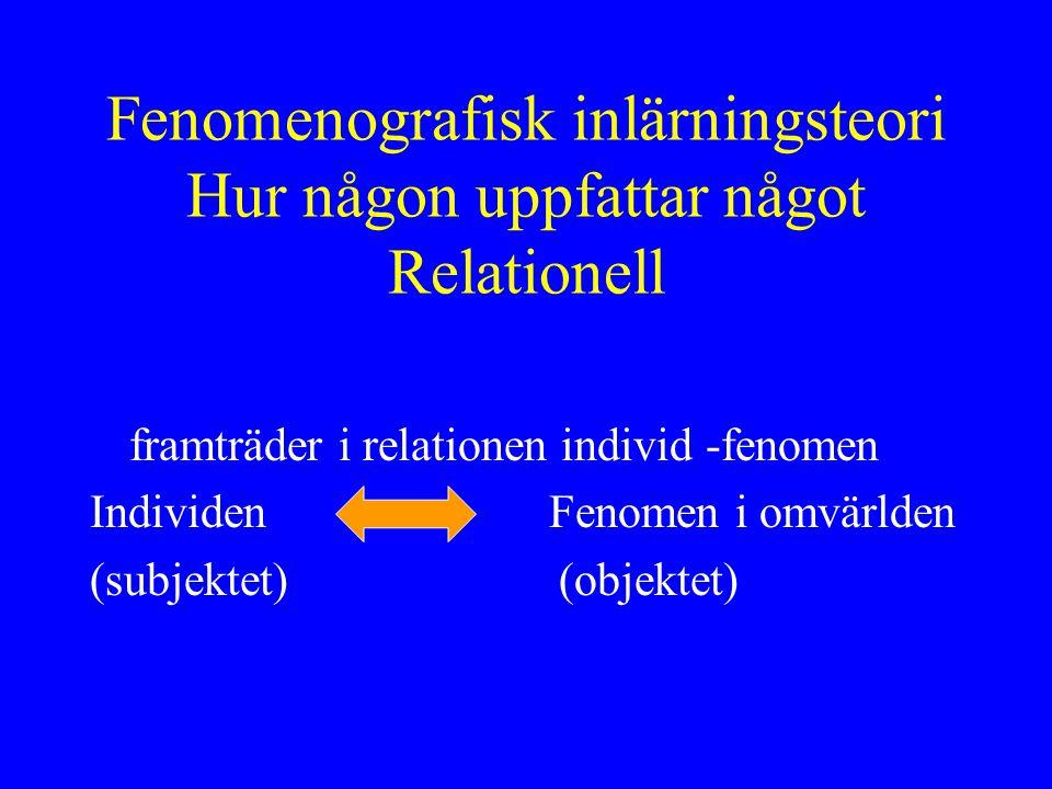 Fenomenografisk inlärningsteori Hur någon uppfattar något Relationell