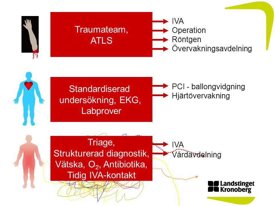 Standardiserad undersökning, EKG, Labprover