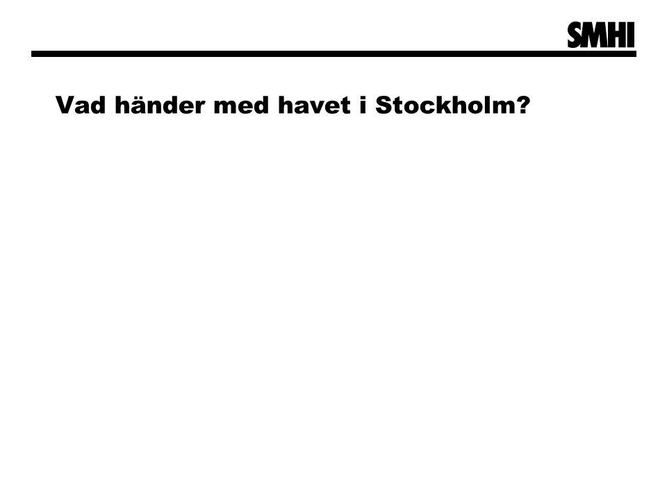 Vad händer med havet i Stockholm