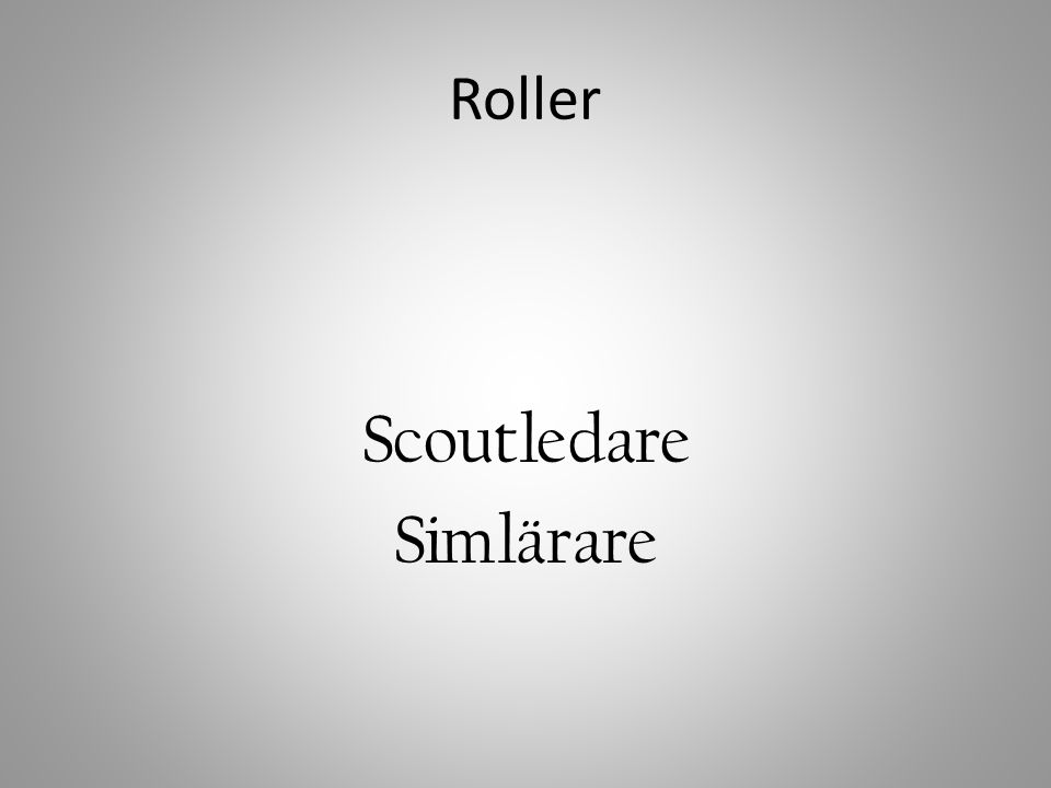 Scoutledare Simlärare