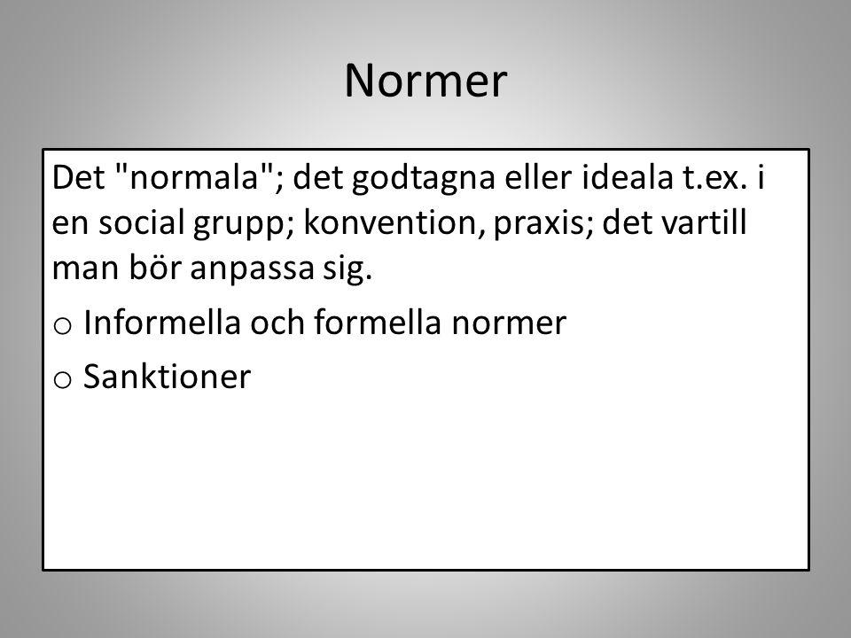 Normer Det normala ; det godtagna eller ideala t.ex. i en social grupp; konvention, praxis; det vartill man bör anpassa sig.