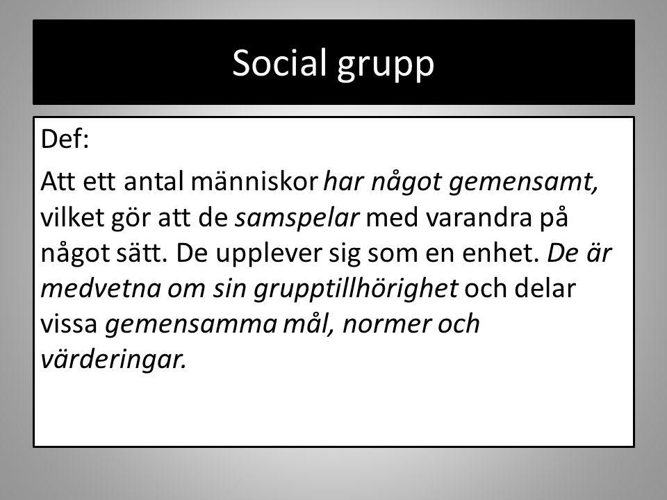 Social grupp