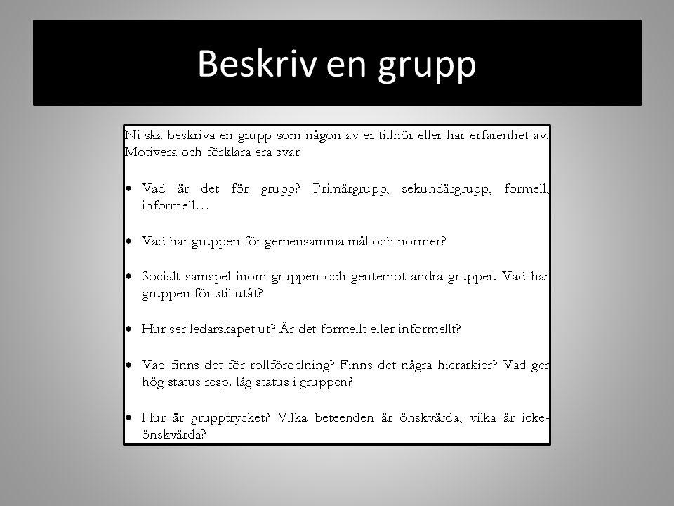 Beskriv en grupp
