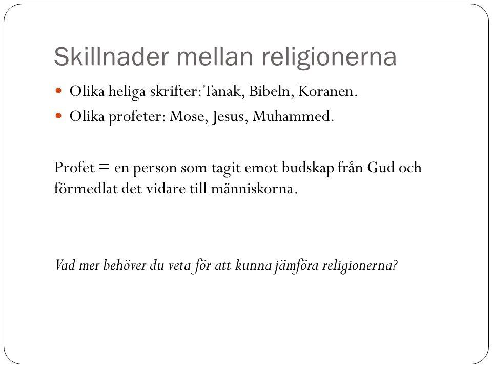 Skillnader mellan religionerna