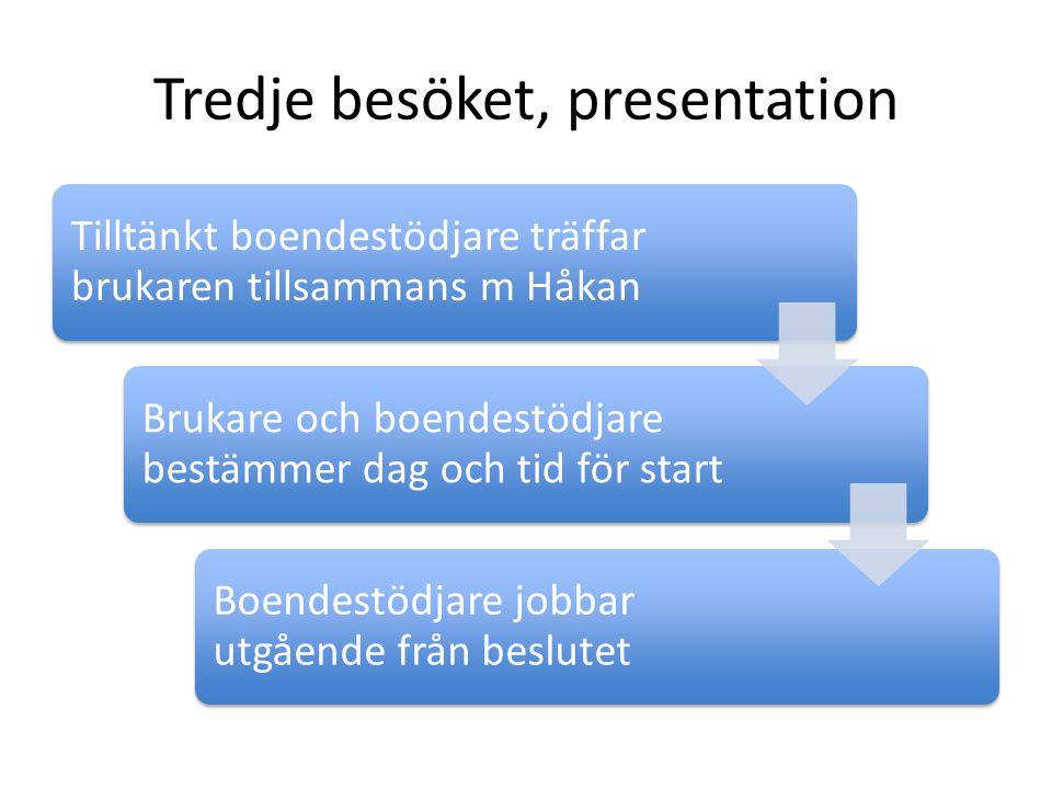 Tredje besöket, presentation