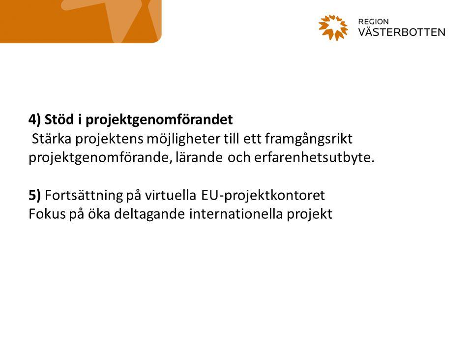 4) Stöd i projektgenomförandet