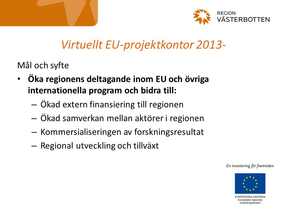 Virtuellt EU-projektkontor 2013-