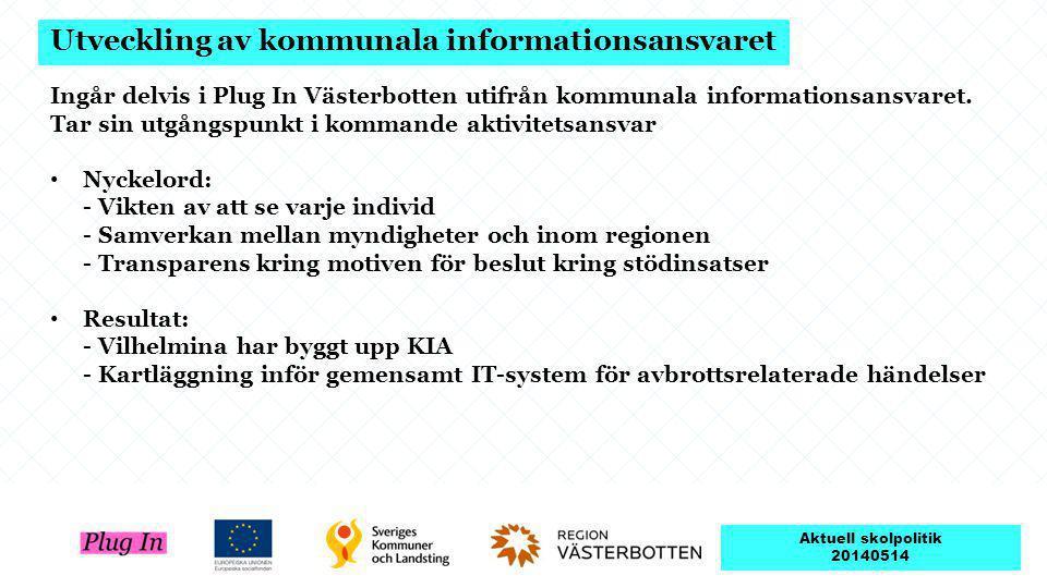 Utveckling av kommunala informationsansvaret