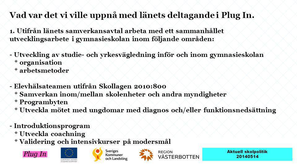 Vad var det vi ville uppnå med länets deltagande i Plug In.