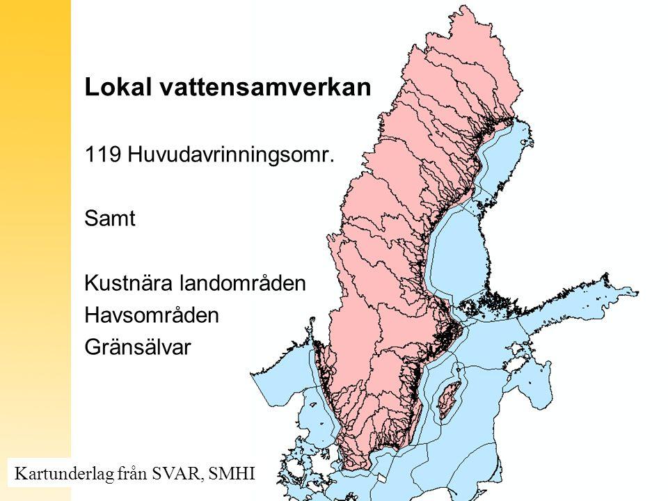 Lokal vattensamverkan