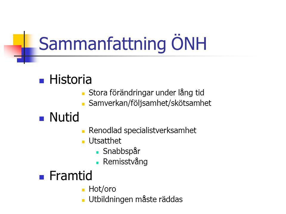 Sammanfattning ÖNH Historia Nutid Framtid