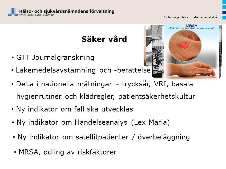 Säker vård GTT Journalgranskning Läkemedelsavstämning och -berättelse