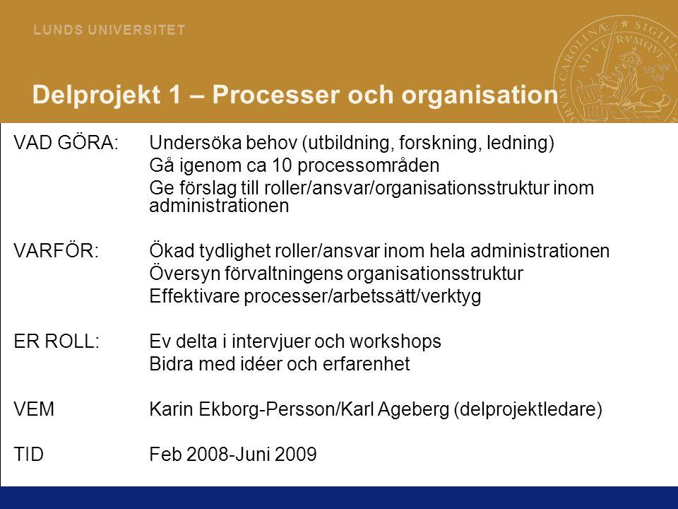 Delprojekt 1 – Processer och organisation
